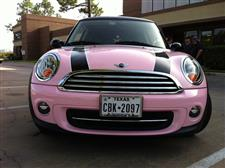 pinkmini9sm.jpg