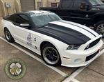 White_Mustang_5.jpg