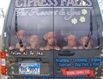cypress_falls1.jpg