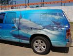 tx-sharkfishing2.jpg